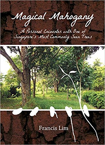 Magical Mahogany: A Personal Encounter with One of Singapore\'s Most Commonly Seen Trees