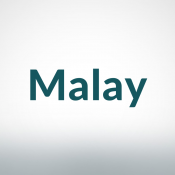 Malay Books (532)