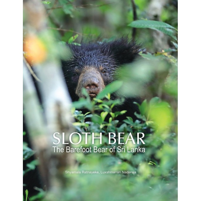 Sloth Bear: The Barefoot Bear of Sri Lanka