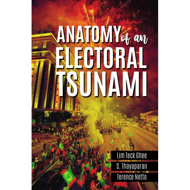 Anatomy of an Electoral Tsunami