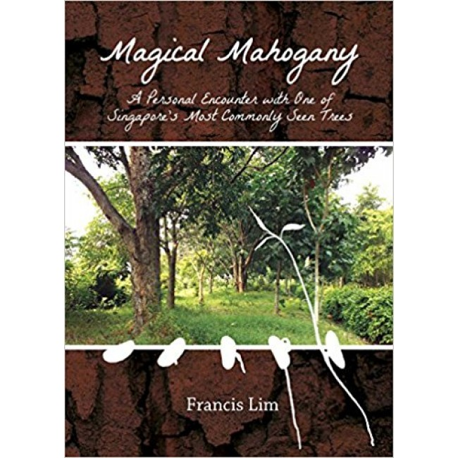 Magical Mahogany: A Personal Encounter with One of Singapore's Most Commonly Seen Trees